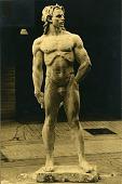 view David [sculpture] / (photographer unknown) digital asset number 1