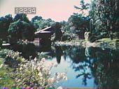 view Chinese Gardens digital asset: Chinese Gardens: 01/00/1984.