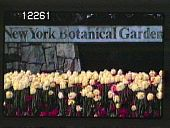 view New York Botanical Garden digital asset: New York Botanical Garden: 1930.