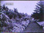 view New York Botanical Garden digital asset: New York Botanical Garden: 1930