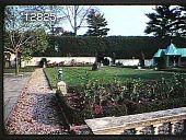 view Chanticleer digital asset: Chanticleer: 09/21/1981