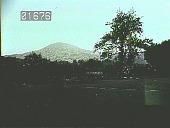 view [Wallace Garden] digital asset: [Wallace Garden]: [1930?]