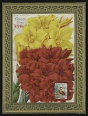 """view <I>Seed catalog page, New Orchid. Flowered Canna, """"Austria""""</I> digital asset number 1"""