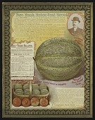 view <I>Seed catalog page, New Musk Melon - Paul Rose</I> digital asset number 1