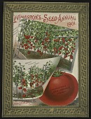 view <I>Seed catalog cover, Livingston's Seed Annual 1901</I> digital asset number 1