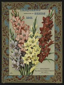 view <I>Seed catalog cover, Farquhar's Catalog of Seeds, 1901: Gladioli</I> digital asset number 1
