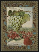 view <I>Seed catalog page, Chas. A Green, grapes & strawberries</I> digital asset number 1