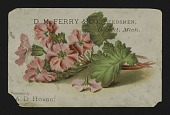 view <I>Trade card, D. M. Ferry and Co.</I> digital asset number 1