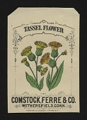 view <I>Seed packet, Comstock, Ferre, & Co., tassel flower</I> digital asset number 1