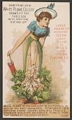 view <I>Trade card, Rice's celery woman with parasol</I> digital asset number 1