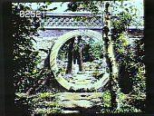 view [Abby Aldrich Rockefeller Garden] digital asset: [Abby Aldrich Rockefeller Garden]: [1930?]