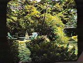view [Lloyd Garden] digital asset: [Lloyd Garden]: [1930?]
