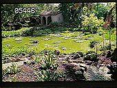 view Lotusland digital asset: Lotusland: 05/01/1990