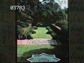 view [Casa del Herrero]: View of south lawn from sleeping porch. digital asset: [Casa del Herrero]: View of south lawn from sleeping porch.: [1930?]