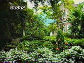 view Constantia digital asset: Constantia: 05/01/1985