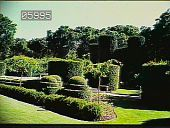 view [Filoli]: yews and topiary. digital asset: [Filoli]: yews and topiary.: 1985 May.