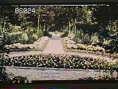 view [Sunnie-Holme] digital asset: [Sunnie-Holme]: [1930?]