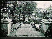 view [Henry Francis du Pont Winterthur Museum Gardens]: staircase from east terrace leading to southwest pool. digital asset: [Henry Francis du Pont Winterthur Museum Gardens]: staircase from east terrace leading to southwest pool.: 1930.