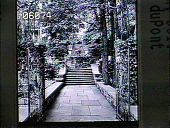 view [Henry Francis du Pont Winterthur Museum Gardens]: looking up stairs toward the house/museum. digital asset: [Henry Francis du Pont Winterthur Museum Gardens]: looking up stairs toward the house/museum.: 1930.