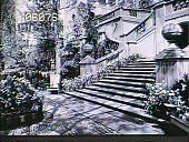 view [Henry Francis du Pont Winterthur Museum Gardens]: lower east terrace. digital asset: [Henry Francis du Pont Winterthur Museum Gardens]: lower east terrace.: 1930.