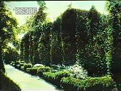 view [Hills & Dales] (GA) digital asset: [Hills & Dales] (GA): [ca. 1920]