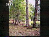 view [Zemurray Gardens] digital asset: [Zemurray Gardens]: 1987 Mar.