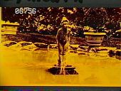 """view [Baymeath]: pool with sculpture """"Wildflower."""" digital asset: [Baymeath]: pool with sculpture """"Wildflower."""": [1920?]"""