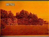 view [Baymeath]: garden border. digital asset: [Baymeath]: garden border.: [1920?]