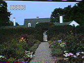 view [The Farm House] digital asset: [The Farm House]: [ca. 1983]