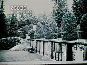 view [Naumkeag]: part of the 1890 arborvitae walk, with what would become the rose garden to the lower left. digital asset: [Naumkeag]: part of the 1890 arborvitae walk, with what would become the rose garden to the lower left.: [1928?]