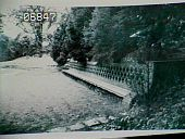 view [Naumkeag]: the long teak bench at the entrance to the Linden Walk before 1940. digital asset: [Naumkeag]: the long teak bench at the entrance to the Linden Walk before 1940.: [between 1928 and 1940]