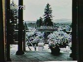 view [Naumkeag]: looking from the temple in the Chinese Garden toward the west. digital asset: [Naumkeag]: looking from the temple in the Chinese Garden toward the west.: 1950.