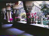 view [The Chimneys]: arcade with columns and terra-cotta potted plants sit on the wall's edge. digital asset: [The Chimneys]: arcade with columns and terra-cotta potted plants sit on the wall's edge.: [1930?]