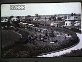 view Dwyer Garden digital asset: Dwyer Garden: 1926