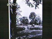 view Cedar Mere digital asset: Cedar Mere: 1930