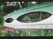 view Magnolia Plantation & Gardens digital asset: Magnolia Plantation & Gardens: 04/01/1981