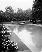 view [Miscellaneous Swimming Pools]: swimming pool and border. digital asset: [Miscellaneous Swimming Pools] [photographic print]: swimming pool and border.