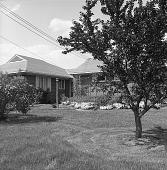 view [MacFadden Garden]: house and plantings. digital asset: [MacFadden Garden] [safety film negative]: house and plantings.