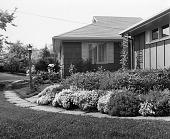 view [MacFadden Garden]: house and plantings in main entrance area. digital asset: [MacFadden Garden] [safety film negative]: house and plantings in main entrance area.