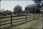 view [Perilla Vineyard]: vineyard and barn. digital asset: [Perilla Vineyard]: vineyard and barn.: 1976 Sep.
