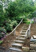 view [Smith Garden No. 2]: rustic stone stairway in woodland garden area. digital asset: [Smith Garden No. 2] [photographic print]: rustic stone stairway in woodland garden area.