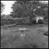 view [Unidentified Garden in Unknown Location]: looking across a garden area and lawn to the pergola, with a corner of the house visible on the far right. digital asset: [Unidentified Garden in Unknown Location] [safety film negative]: looking across a garden area and lawn to the pergola, with a corner of the house visible on the far right.