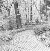 view [Swain Garden]: brick walkway leading toward woods. digital asset: [Swain Garden] [safety film negative]: brick walkway leading toward woods.