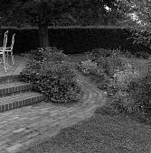 view [Whipple Garden]: garden borders at edge of terrace, with hedge beyond. digital asset: [Whipple Garden] [safety film negative]: garden borders at edge of terrace, with hedge beyond.
