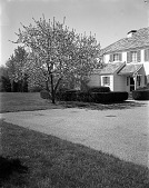 view [Unidentified Garden in Unknown Location]: parking area, house, and hedge. digital asset: [Unidentified Garden in Unknown Location] [safety film negative]: parking area, house, and hedge.