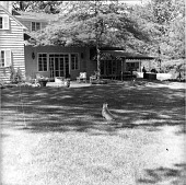 view [Unidentified Garden in Unknown Location]: view of house across lawn, with dog in center foreground. digital asset: [Unidentified Garden in Unknown Location]: view of house across lawn, with dog in center foreground.: [between 1960 and 1994]