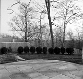 view [Unidentified Garden in Unknown Location]: looking across patio toward side of property. digital asset: [Unidentified Garden in Unknown Location]: looking across patio toward side of property.: [between 1960 and 1994]