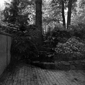 view [Unidentified Garden in Unknown Location]: rocky landscaped area adjacent to patio. digital asset: [Unidentified Garden in Unknown Location] [contact print]: rocky landscaped area adjacent to patio.