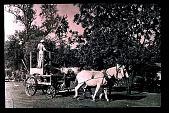 view Jasmine Hill: horse drawn sprayer - 1920's. digital asset: Jasmine Hill: horse drawn sprayer - 1920's.: 1920