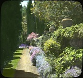 view [New Place]: below the balustrade is a flower border alongside the Italian cypress. A giant Sycamore shades the upper terrace. digital asset: [New Place]: below the balustrade is a flower border alongside the Italian cypress. A giant Sycamore shades the upper terrace.: [between 1914 and 1949?]